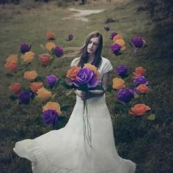 Andrea Peipe Photography